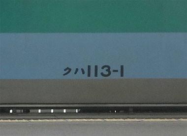 13053059