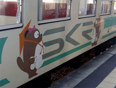 Skr11